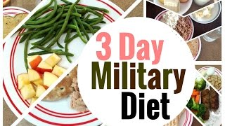 LOSE 10 POUNDS IN 3 DAYS?! | 3 Day Military Diet Vlog | Does it Work?! + My Experience and Results