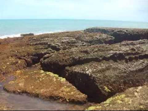 PORTO SEGURO BAHIA praia naturalista por KLEBER WILLIAM LEME mr kleber been and rose e rafa
