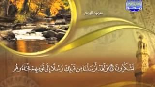 الجزء الحادي والعشرون من القرآن الكريم ماهر المعيقلي