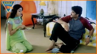 Vishwa the Heman Hindi Dubbed Movie || Nagarjuna & Shriya Best Comedy Scene || Eagle Entertainment