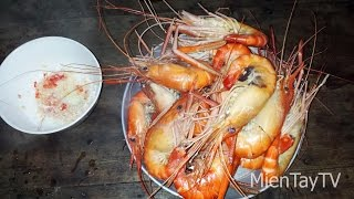 Tôm luộc nước dừa [Miền Tây TV]