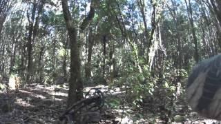 tarawera roar 2015