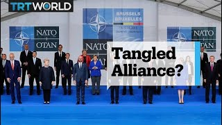 NATO leaders' summit and Turkey's state of emergency