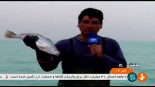 Iran Ahvaz city, People & Fish market مردم و بازار ماهي شهر اهواز ايران