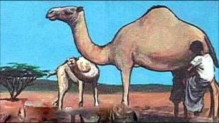 Ismahan Houmed & Abdi Nuur -  Raran Jacayl
