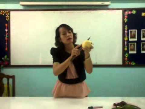 คลิปการสอนอนุบาล หน่วยผลไม้