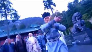 Heavenly Sword and Dragon Sabre 2009 Battle at Mount Wudang