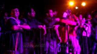 'Gandu' - Live by Q's Gandu Circus