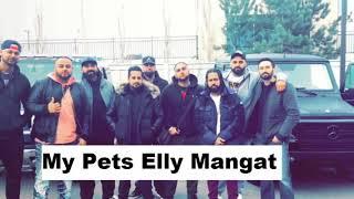 My Pets (FULL SONG) Elly Mangat Ft. Randy J | Deep Jandu New Punjabi Song 2017