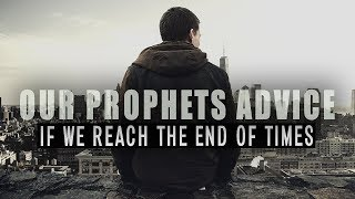 Our Prophets Advice If We Reach The End of Times