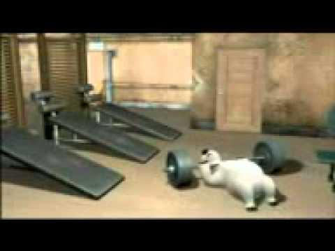 Xxx Mp4 Bernard Bear In Gym 3gp 3gp Sex