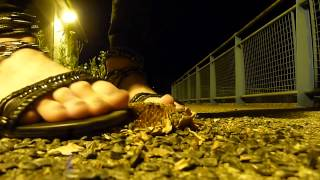 Sandals K by Kookai Sunflower Crush