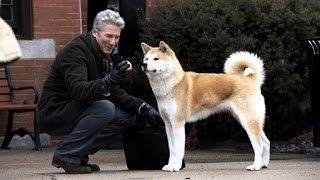 Hačikó: Príbeh psa (2.1.2017 o 20:30 na PLUSke)