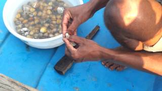 Selling 'Pearls' in Chilika lake, Orissa (Odisha)