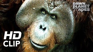 Dawn of the Planet of the Apes | 'Hanging Out' | Clip HD