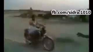 funny arabic   Video Dailymotion