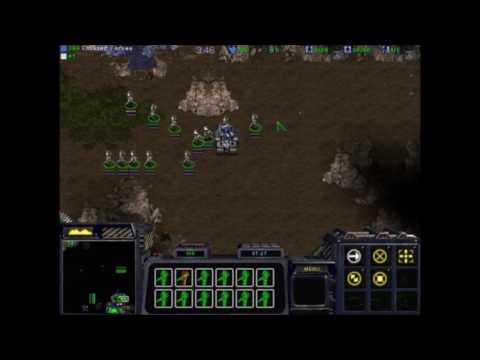 Xxx Mp4 Starcraft Infi Example Egypt 3gp Sex