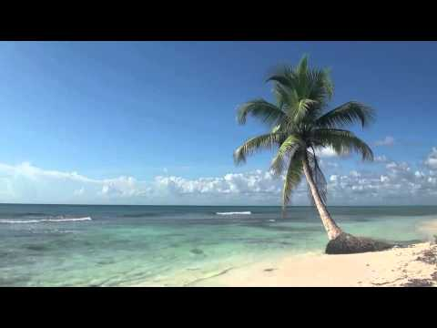 Xxx Mp4 Island Fever Jimmy Buffett 3gp Sex