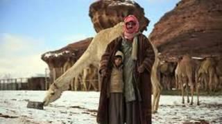 Tanda kiamat Kembali Mucul SALJU  Di Gurun ARAB Saudi ~ Berita Islami  terbaru