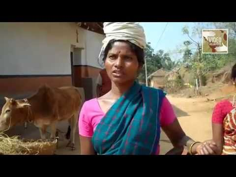 Another Hot Thirsty Summer for Rural Jharkhand