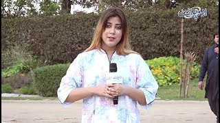 Woh Kaunsi Cheez Hai Jo Tootnay Per Sab K Kaam Aati Hai? Common Sense Question
