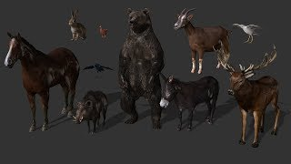 NEW ANIMALS  + ANIMATIONS (Scum animal models) (Iclone 6 and 7) FCMP-104