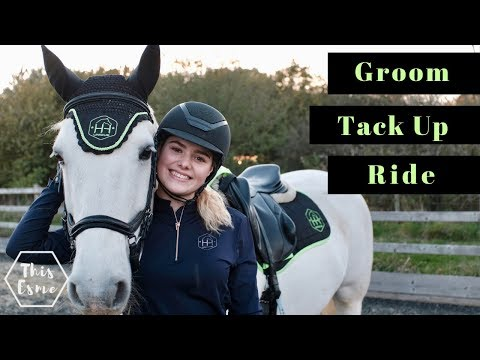 Xxx Mp4 Groom Tack Up And Ride With Me And My Horse For Showjumping Equestrian Routine This Esme 3gp Sex