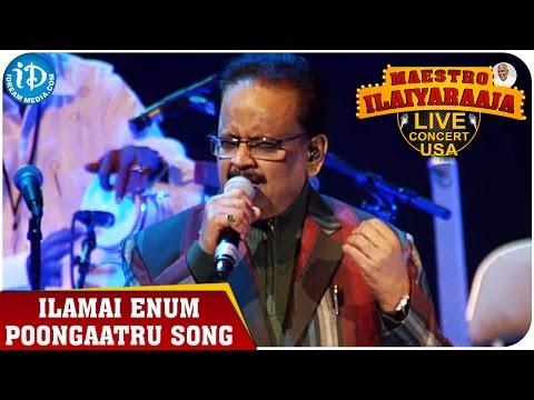 Xxx Mp4 Maestro Ilaiyaraaja Live Concert Ilamai Enum Poongaatru Song SP Balasubrahmanyam 3gp Sex