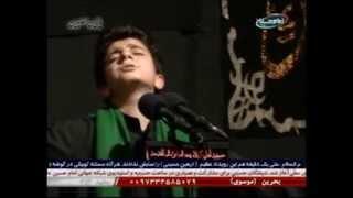 وای امان از دل زینب - سیدمحمدباقر علوی