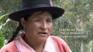 Los Quechuas en el Perú