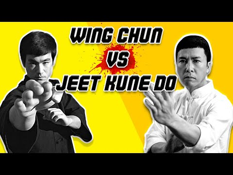 Wing Chun vs  Jeet Kune Do - Which is Better?
