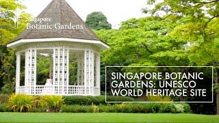 Singapore Botanic Gardens - A World Heritage Site