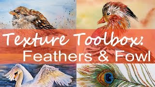 NEW Class (Promo) Texture Toolbox: Feathers & Fowl 50% off special!