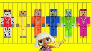 Paw Patrol Minecraft Bricks Figures, LOL Surprise Doll Baby Jail, Learn Colors with Chase Skye Toys