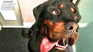 SHOW DOGS | Clip and Trailer Compilation for Dog Friendly Family Comedy Movie