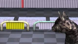 Quantum Mechanics:  Animation explaining quantum physics