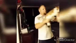 مقاطع مضحكة على القطط 😹😹😹