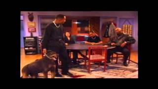 Martin Famous Dog Scene (Best Quality)