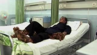 Treeman the Cure: My Shocking Story