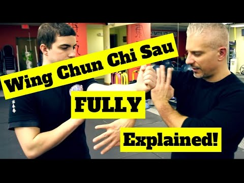 Why Wing Chun CANNOT Handle Boxers or Wrestlers - You MUST Understand Chi Sau