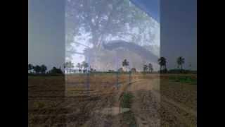 FOZIA SOOMRO MARWARI_.BEAUTIFULL SONG