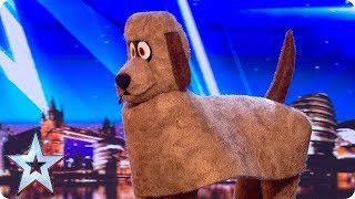 FIRST LOOK: Dudley the Dancing Dog | BGT 2018