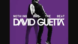 david guetta  nicki minaj  turn me on official instrumental