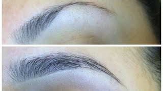 How I grew my eyebrows in 2 MONTHS!   Makeup By Leyla