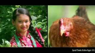 Nepali Comedy Video  Phool parne Pothi Kwak Kwak
