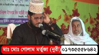 Bangla Waz। Moulana Golam Murtaza Nuri । Chatmohor ।  Pabna