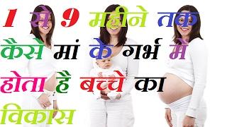 माँ के गर्भ में बच्चे का विकास 9 महीने तक कैसे होता है  stages of pregnancy    pregnancy calculator