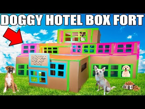 3 STORY DOG BOX FORT HOTEL!! 📦🐶 Boxfort hotel de le dog!