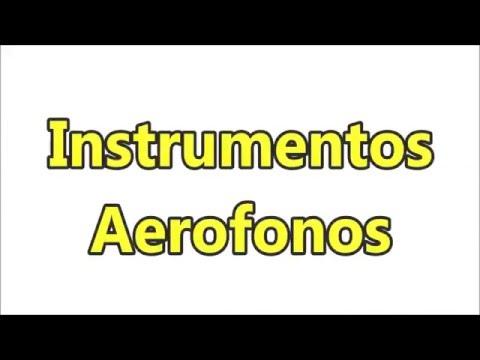 1 MUSICA instrumentos aerofonos