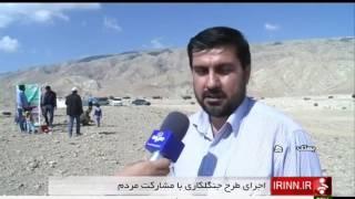 Iran Planting trees, Bastak county كاشت درخت شهرستان بستك ايران